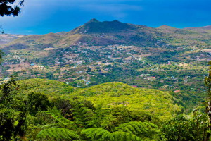 Nevis-Tourism-Authority