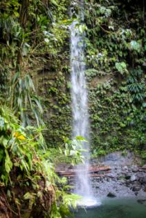 Dominica's tourism sector ready to welcome visitors 1