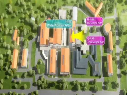 GIS Dominica: Designs for New National Hospital 4