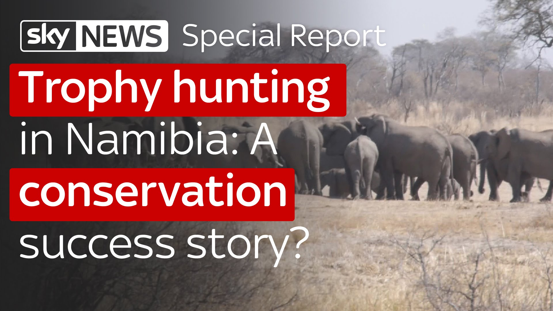 Trophy hunting in Namibia: A conservation success story? 8