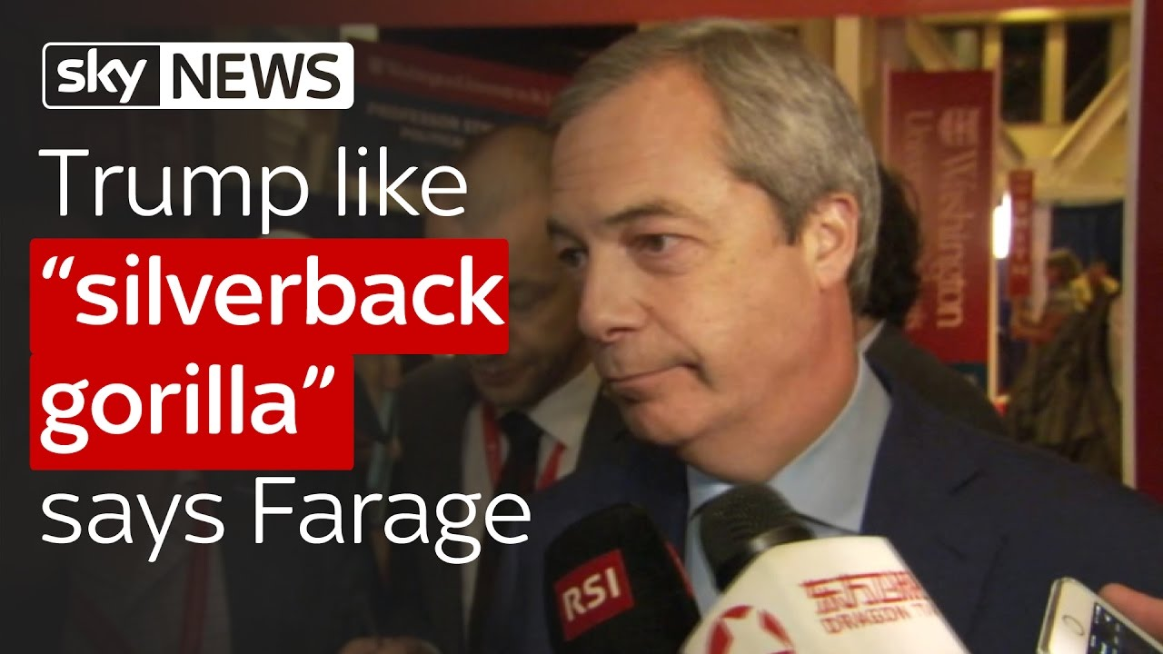 Trump like 'silverback gorilla' says Farage 4