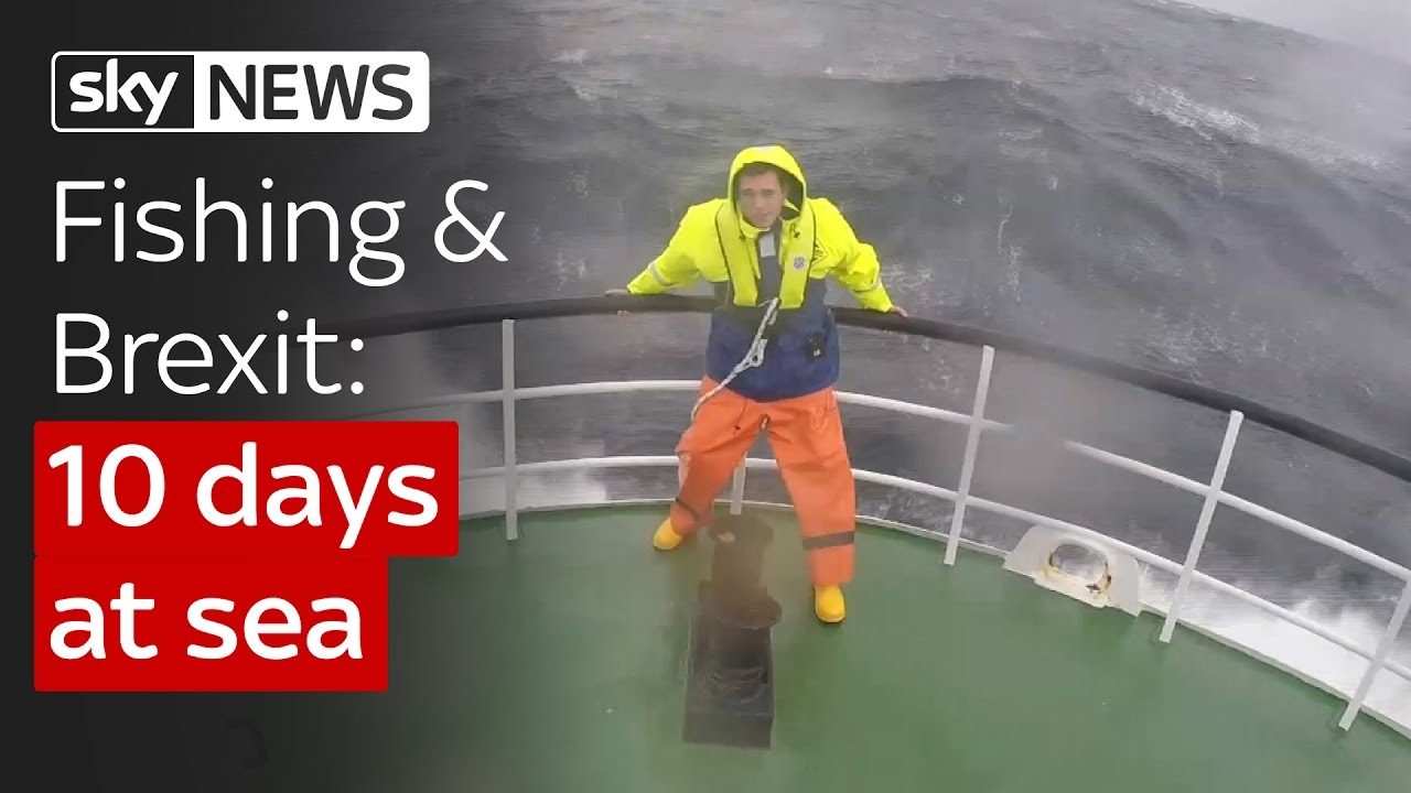 Spending 10 days at sea to learn about fishing and Brexit 3