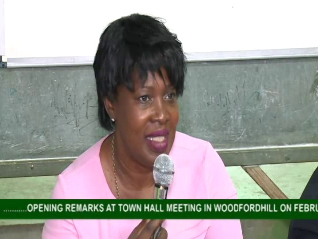 GOVERNMENT TOWN HALL MEETING IN WOODFORDHILL 8