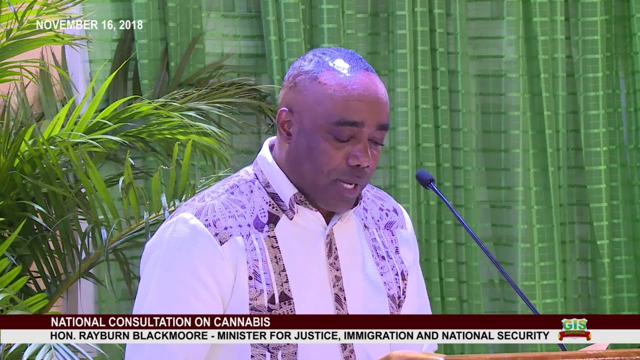 Hon. Rayburn Blackmoore addresses National Consultation on Cannabis 14