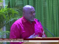 DEPUTY PRIME MINISTER HON. REGINALD AUSTRIE ADDRESSES NATIONAL CONSULTATION ON CANNABIS