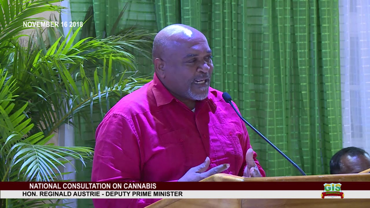 DEPUTY PRIME MINISTER HON. REGINALD AUSTRIE ADDRESSES NATIONAL CONSULTATION ON CANNABIS 11