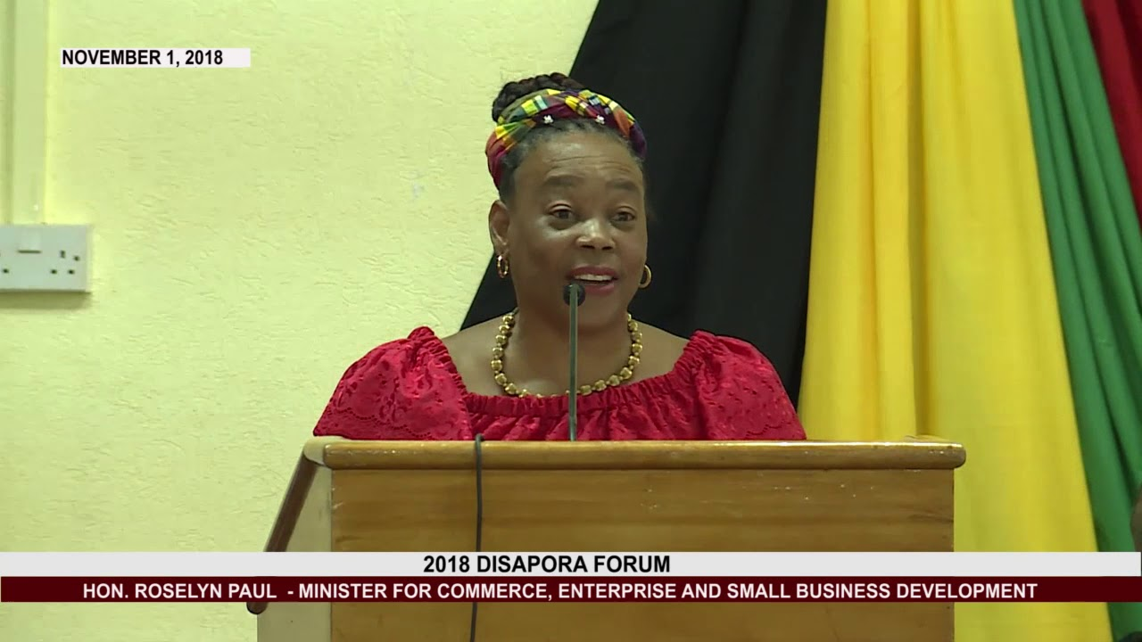 HON. ROSELYN PAUL  ADDRESSES  DIASPORA FORUM 2018 5