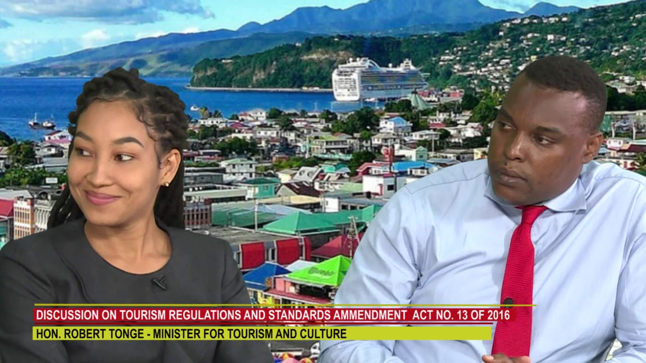 DISCUSSION ON DOMINICA'S TOURISM REGULATIONS AND STANDARDS 8