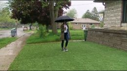 This homeowner is in a turf war with City of Toronto over her artificial lawn 8