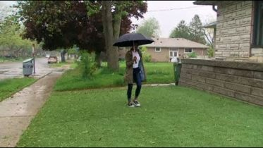This homeowner is in a turf war with City of Toronto over her artificial lawn 6