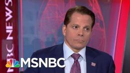 Anthony Scaramucci Reacts To President Donald Trump's Recent Comments | Velshi & Ruhle | MSNBC 3