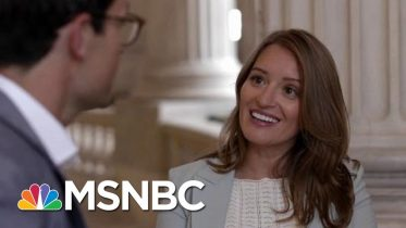 American Swamp | Four-Part Special Series | MSNBC 6