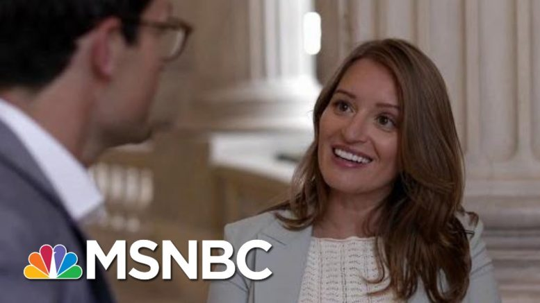 American Swamp   Four-Part Special Series   MSNBC 1