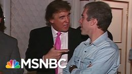 1992 Tape Of Trump And Epstein - The Day That Was | MSNBC 9