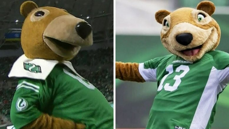 Can you spot the difference? The new Saskatchewan Roughriders mascot has some fans fuming 1