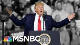 Trump Says He Tried To Stop 'Send Her Back!' Chant Aimed At Omar. He Didn't. | The 11th Hour | MSNBC 5