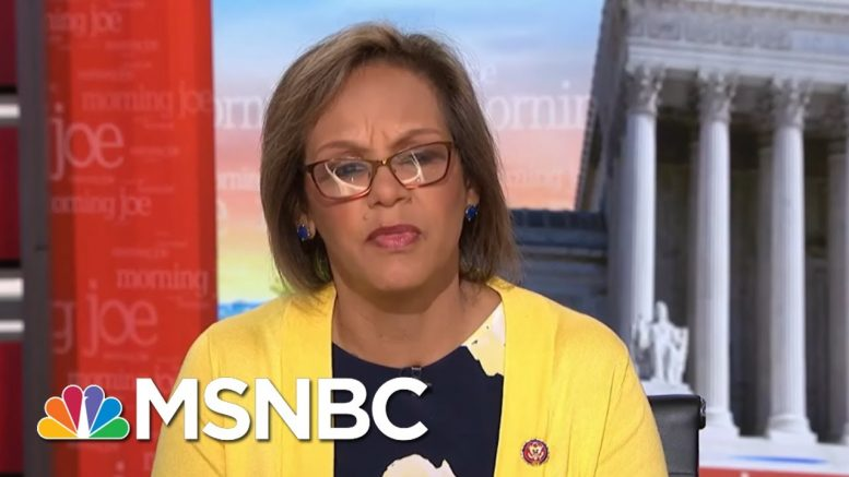 Congresswoman Urges Public To Speak On Border Crisis | Morning Joe | MSNBC 1