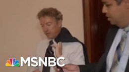 Rand Paul Is A Master Of Avoiding Reporters' Questions | All In | MSNBC 2