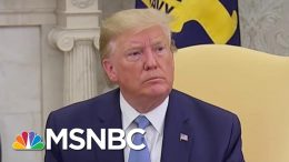 President Donald Trump: 'I'm Not Going To Be Watching' Mueller Testimony Before Congress | MSNBC 1