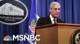 Robert Mueller Testimony Will Change Some Minds, Says Judiciary Member | Morning Joe | MSNBC 2