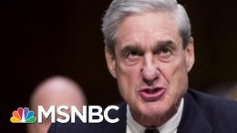 Joe: DOJ Protecting Donald Trump Politically | Morning Joe | MSNBC 8