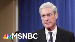 Lawmakers At Mueller Hearing Should 'Ask Very Short Questions' | MTP Daily | MSNBC 5