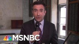 Ari Melber: Robert Mueller Inferring That President Donald Trump Is A Liar, But Not A Crook | MSNBC 3