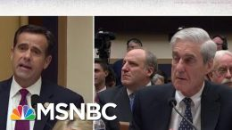 Representative John Ratcliffe Grandstands During Robert Mueller Testimony | MSNBC 8