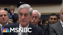 Mueller Says 'I Take Your Question' To Gohmert's Accusations Of Perpetuating 'Injustice' | MSNBC 3
