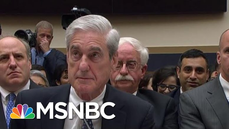 Mueller Says 'I Take Your Question' To Gohmert's Accusations Of Perpetuating 'Injustice' | MSNBC 1