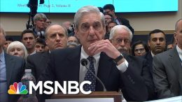 Highlights From Robert Mueller's Judiciary Committee Testimony | MSNBC 5