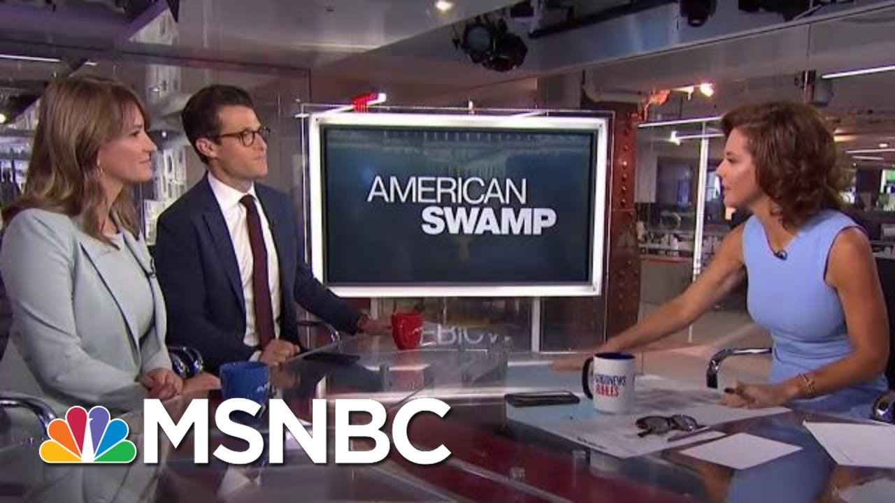 American Swamp: Following The Dark Money Buying Our Elections | Velshi & Ruhle | MSNBC 4