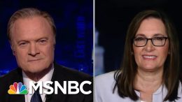 Joyce Vance On The Most Important Exchange In Mueller's Testimony | The Last Word | MSNBC 5