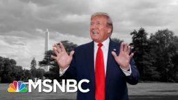 Fmr. Federal Prosecutor Alksne: My Hunch Is Trump's Gotten Away With It | The 11th Hour | MSNBC 4