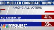 Poll: 41% Don't Think Mueller Exonerated Trump | Hardball | MSNBC 4