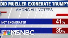 Poll: 41% Don't Think Mueller Exonerated Trump   Hardball   MSNBC 7