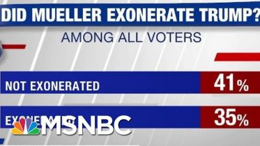 Poll: 41% Don't Think Mueller Exonerated Trump | Hardball | MSNBC 3