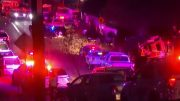 Garlic Festival Shooting Leaves At Least Three Dead | MSNBC 3