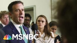 'No Evidence' Trump DNI Pick Ratcliffe Prosecuted A Terrorism Case | MTP Daily | MSNBC 9
