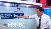 Liberals Vs Moderates: Steve Kornacki Breaks Down The Numbers | MSNBC 5