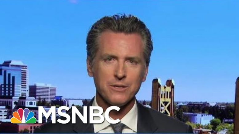 Gavin Newsom Signs First Law Requiring Candidates To Reveal Taxes | Rachel Maddow | MSNBC 1