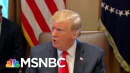 A Donald Trump History Lesson | All In | MSNBC 4