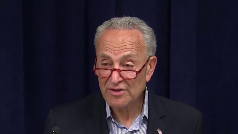 Schumer Calls On McConnell For Senate Session Following Shootings | MSNBC 1