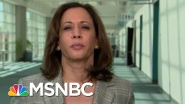 Senator Kamala Harris On Gun Violence: People Are Dying Everyday In America | Hardball | MSNBC 1