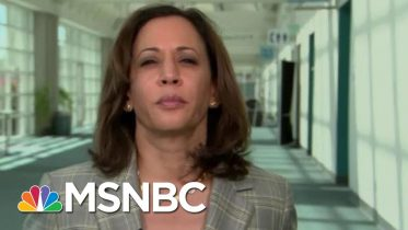 Senator Kamala Harris On Gun Violence: People Are Dying Everyday In America | Hardball | MSNBC 4