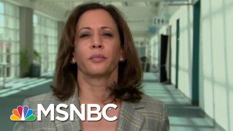 Senator Kamala Harris On Gun Violence: People Are Dying Everyday In America | Hardball | MSNBC 1