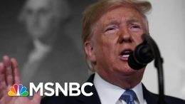 Trump Condemns Mass Shootings But Fails To Mention His Own Past Rhetoric | The 11th Hour | MSNBC 2