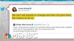 Gun Safety Advocates Make Room For Newly Converted Republicans | Rachel Maddow | MSNBC 2