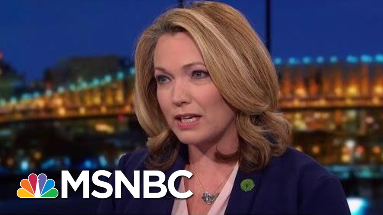 Progress On Gun Reform Getting 'Stuck In The Fight'   Rachel Maddow   MSNBC 2