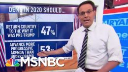 Steve Kornacki: More That Half Of Democrats Want A More Progressive President Than Obama | MSNBC 4